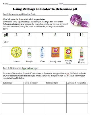 Free download of student worksheet for a cabbage pH indicator lab - chemistry lab report