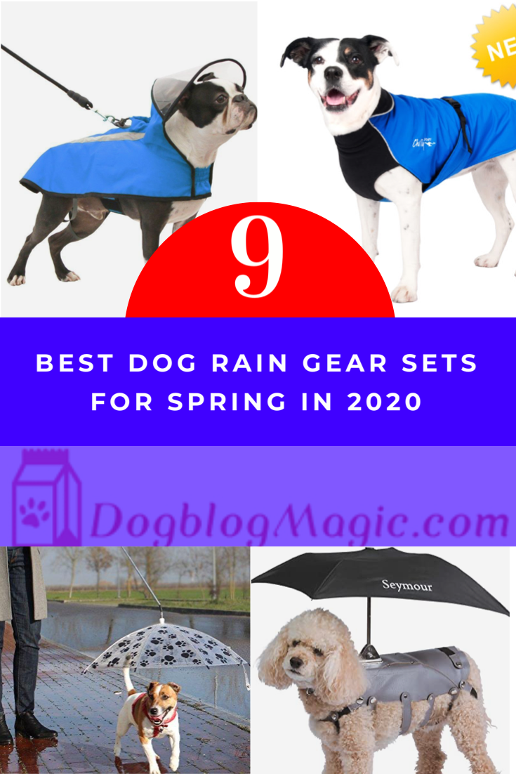 Rain jacket designed to fit a small dog. Collar, opening for leash, and hook loop fastening at neck. Belt with reflective strips and hook-loop fastening at. #dogs #dogblogmagic #pitbulls #lovedogs #raincoat #raincoatsforwomen #poodle #poodlepuppy #poodlepuppies #poodlelove #rottweiler #rottweilerpuppy #rottweilerpuppies #rottweilerlove #rottweilerdog