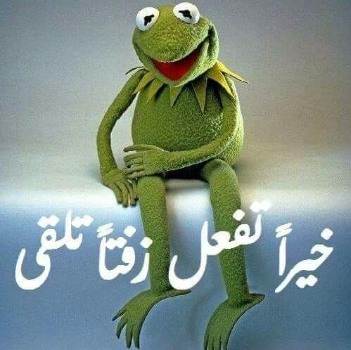 مقتنع بكلامك برااافووو عليك وره كلشي صار جاي تكول هالحجي Funny Arabic Quotes Super Funny Videos Funny Reaction Pictures