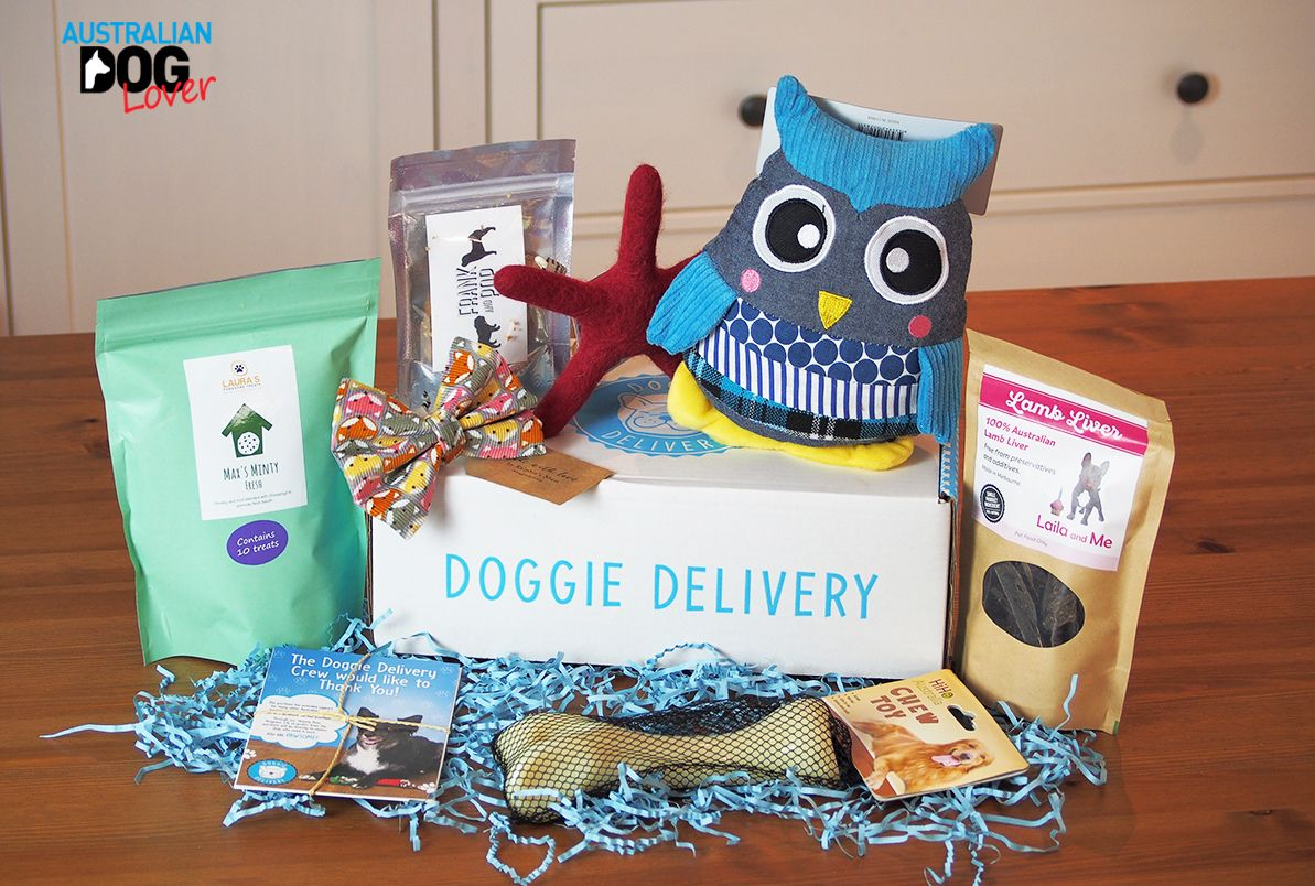 Puppy gift box australia
