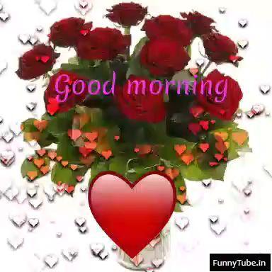 Beautiful good morning gif status video whatsapp videos beautiful good morning gif status video good morning wish gif good morning greeting gif good morning animated gif good morning have a nice day gif good m4hsunfo