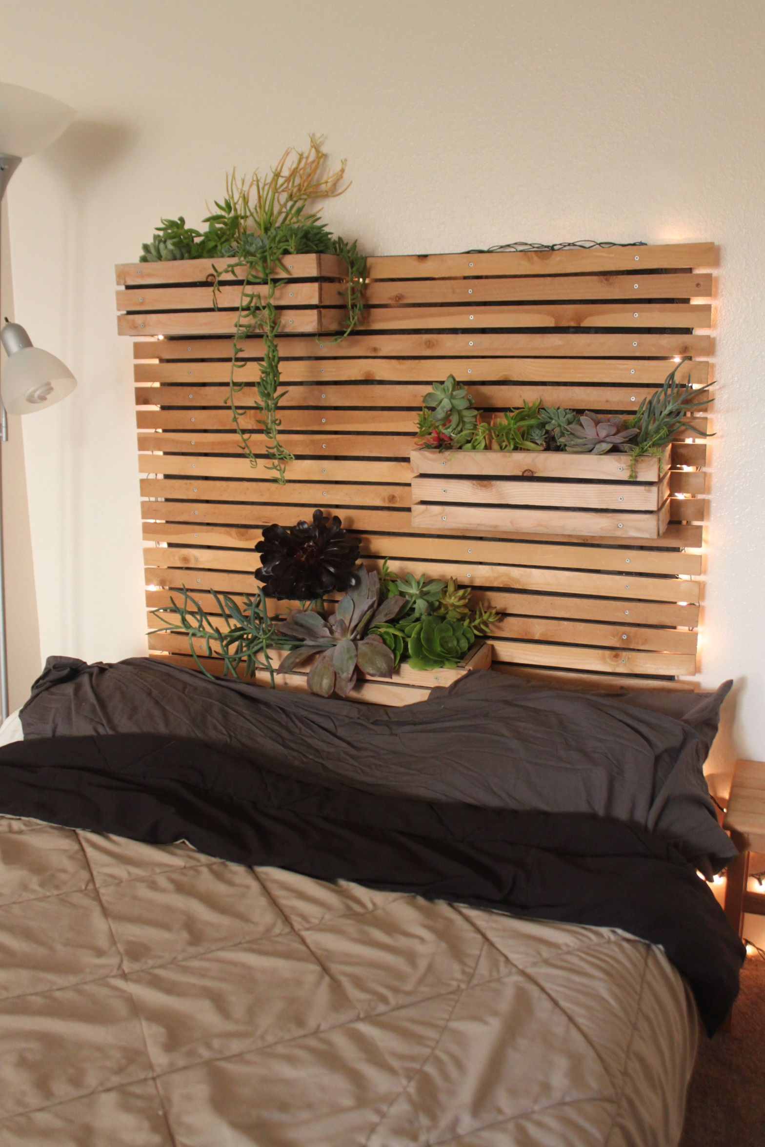 Vertical Garden Headboard. Cedar planks and succulent planer boxes ...