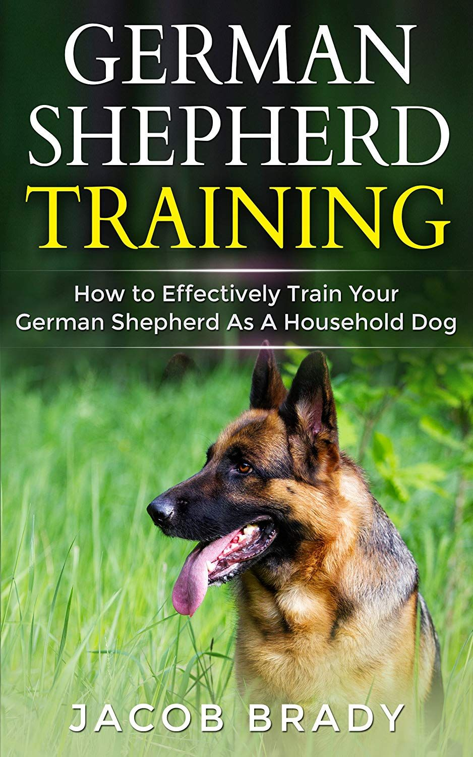 German Shepherd Training How To Effectively Train Your German