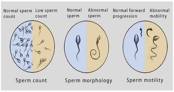 Lowering sperm count