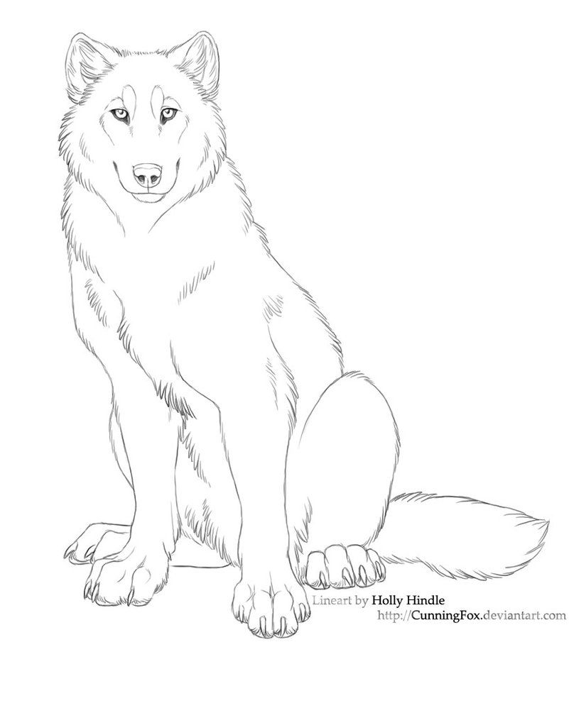 Free Lineart  Wolf Sitting By Cunningfox On Deviantart