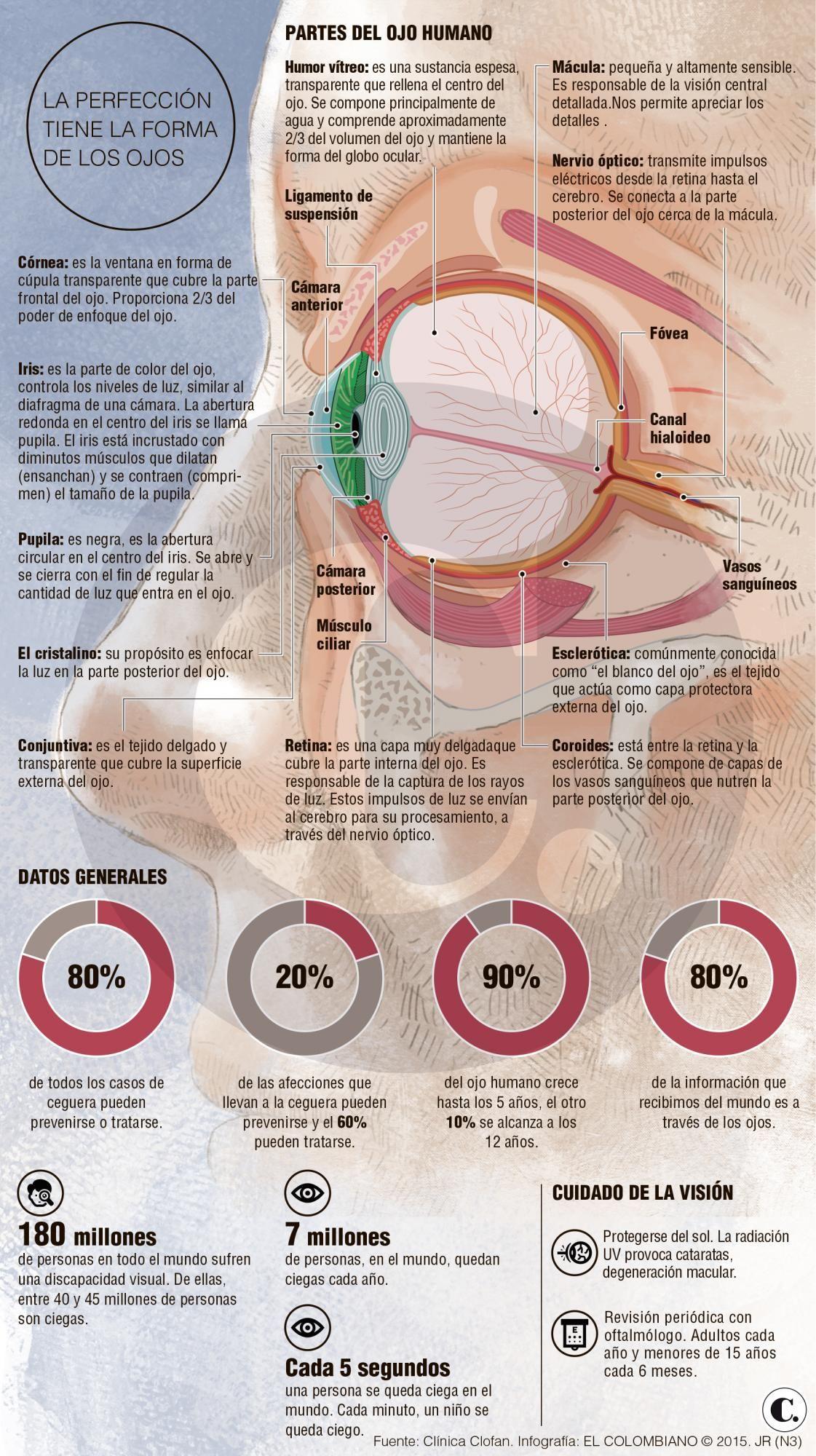 Sabes cómo funciona el ojo? | #SaludVisual #Infografia | Salud ...