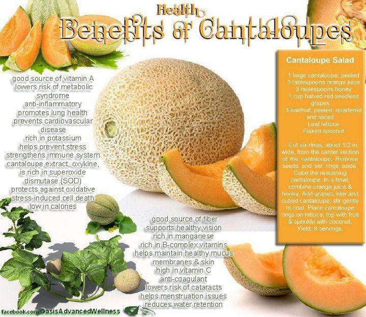 Cantaloupe   Coconut health benefits Cantaloupe benefits ...