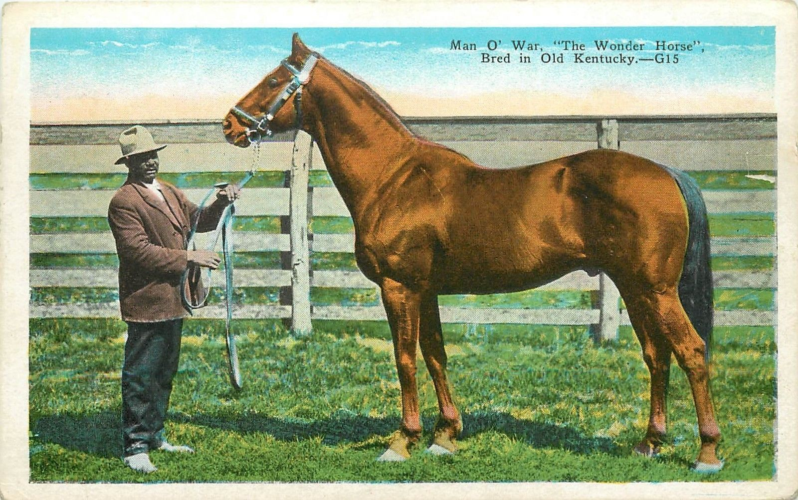 "Man-O-War. ""The Wonder (Race) Horse""."