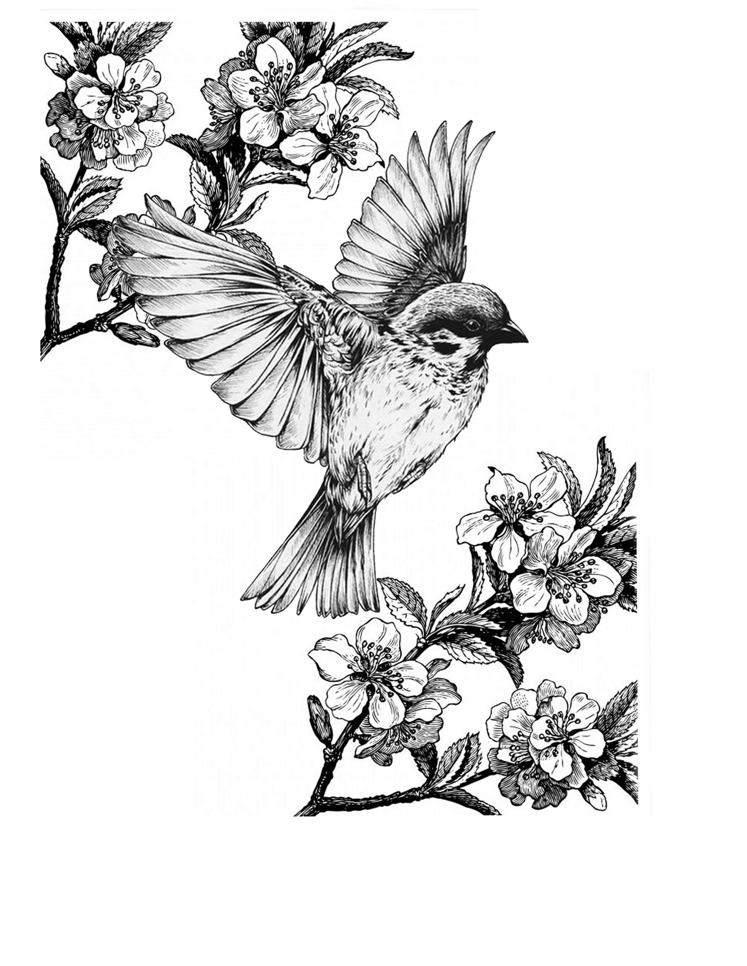 pingl par j nis resnis sur blackwork ink en 2018 pinterest dessin tatouage et tatouage oiseau. Black Bedroom Furniture Sets. Home Design Ideas