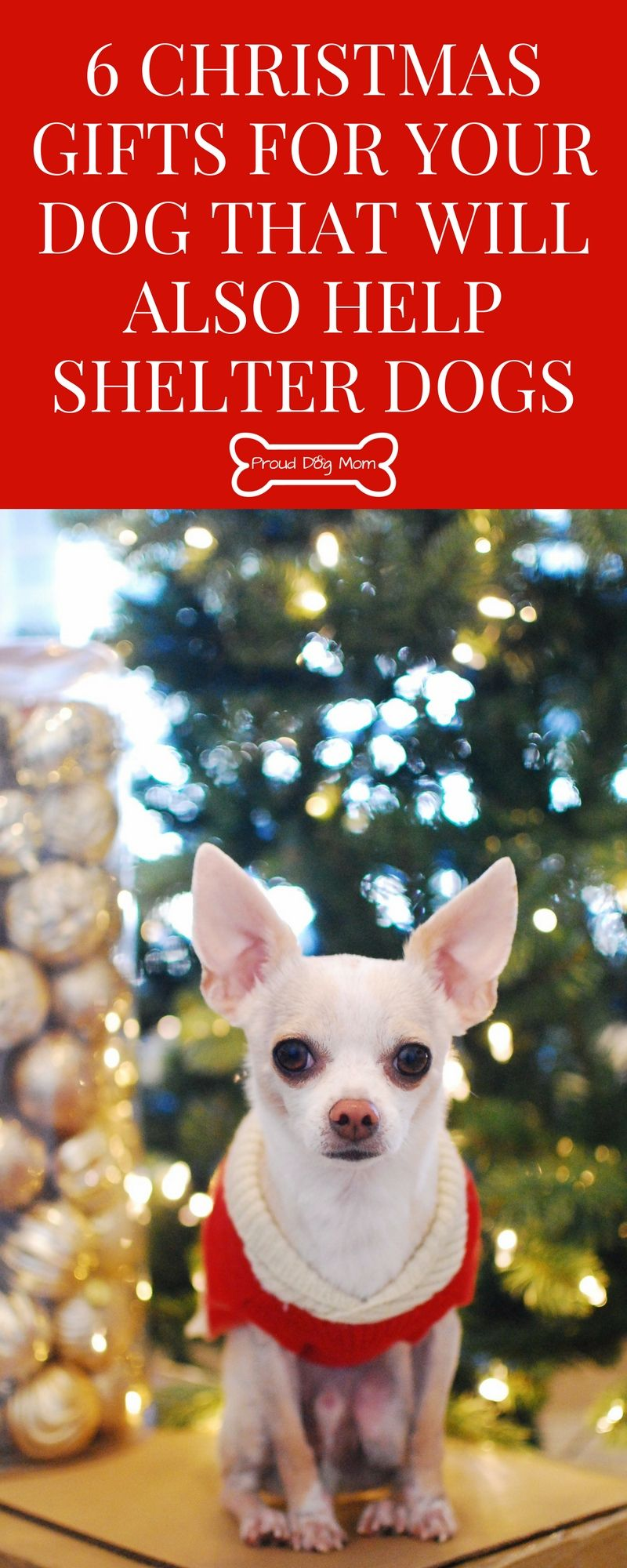 6 Christmas Gifts For Your Dog That Will Also Help Shelter Dogs ...