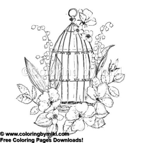 Secret Garden Bird Cage Coloring Page 1172 Ultimate Coloring