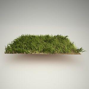 grass free 3d model | Free 3d models | Model, Photoshop