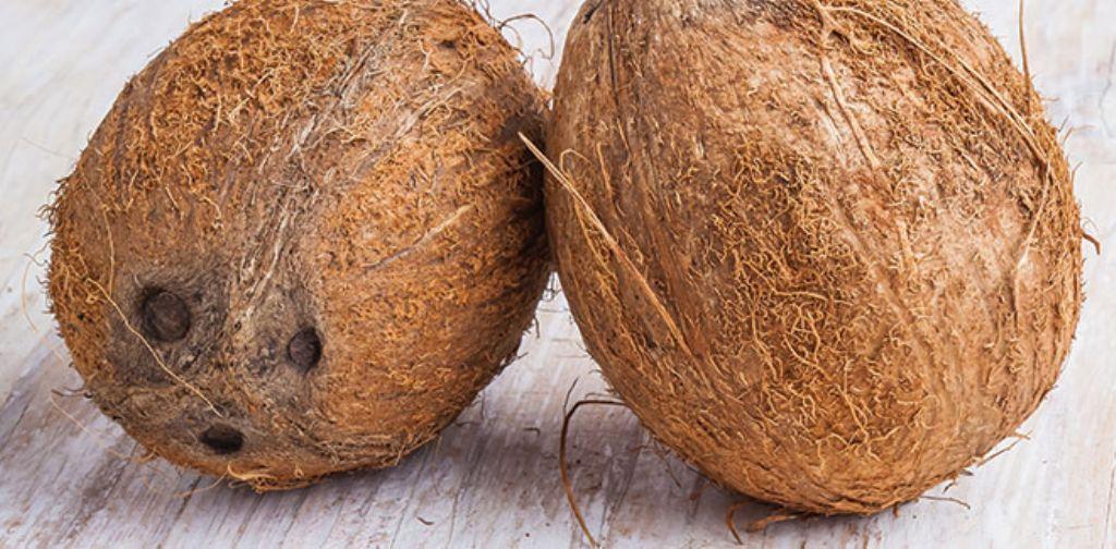 El agua de coco es una bebida extraída del coco inmaduro repleta de nutrientes y con una amplia variedad de propiedades terapéuticas. Desde hace años, el agua de coco se ha venido usando como remed…
