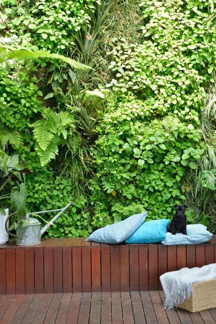 Garten pflegeleicht vertikaler Garten eine grüne Wand eine Bank
