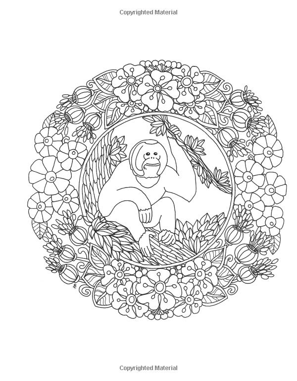 Amazon Angela Porters Zen Doodle Animal Tangles New York Times Bestselling Artists DoodleColoring BooksAdult