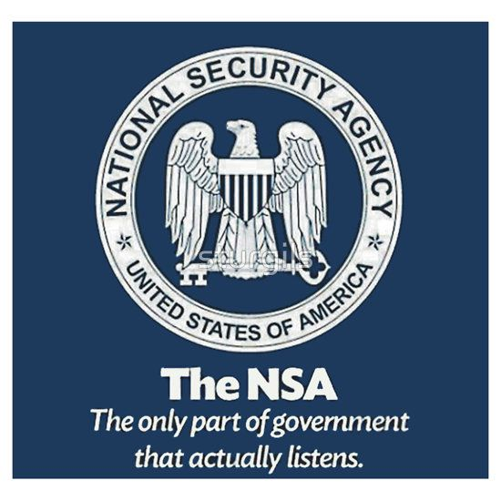 Nsa fun stands for