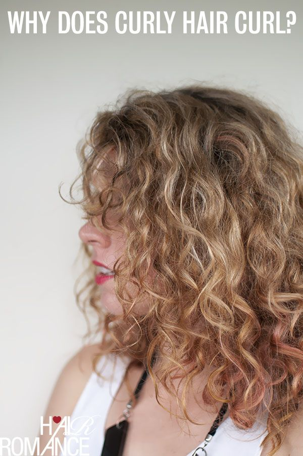 Marvelous For Our Curly Haired Friends A Dutch Braid Style Created For You Hairstyle Inspiration Daily Dogsangcom