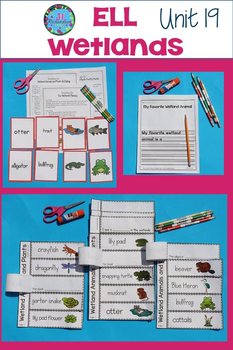 Wetland Animals Plants Esl Ell With Images Elementary
