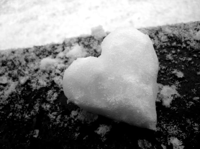 Winter Love - Winter & Nature Background Wallpapers on ...   Hearts In Nature Winter