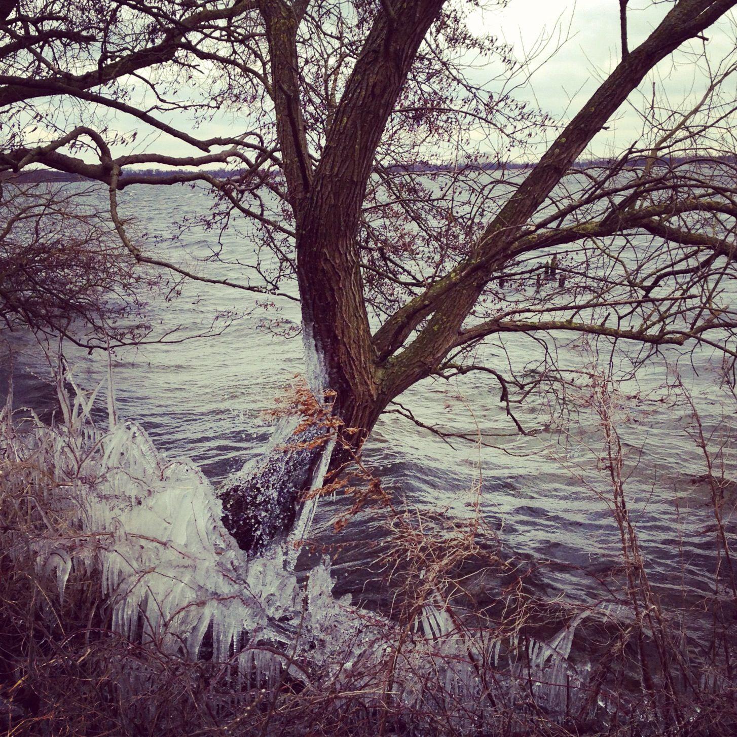 Winter, Loosdrecht, Netherlands
