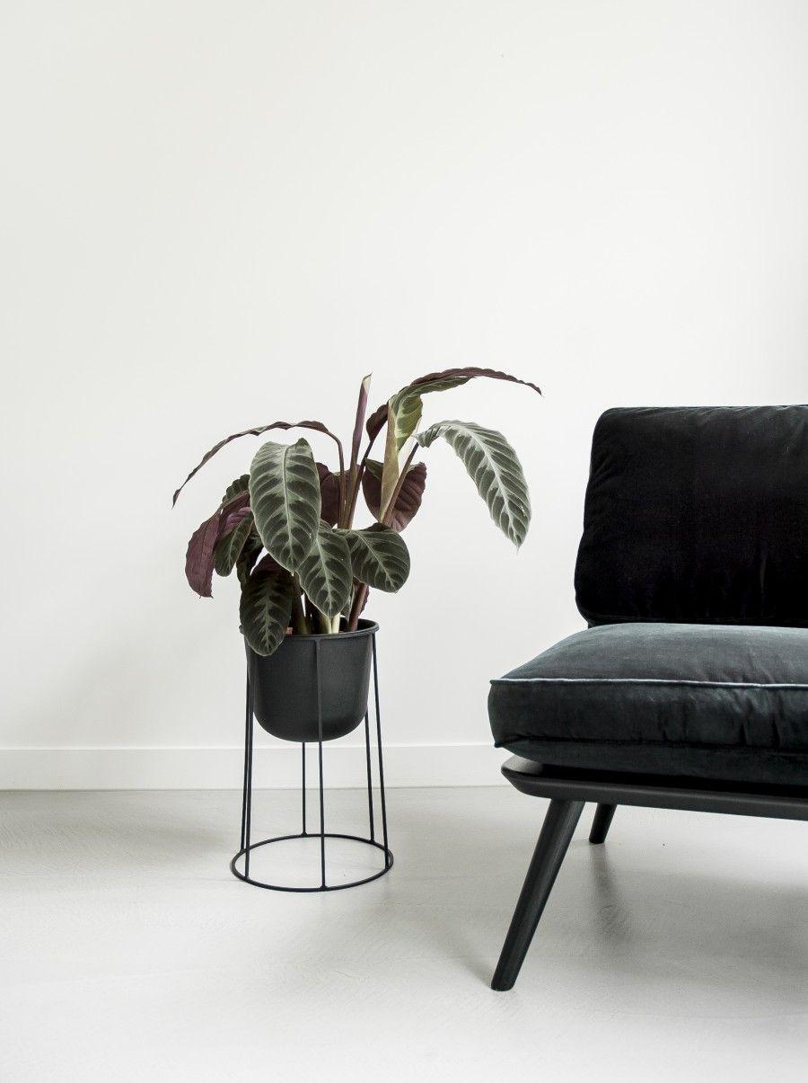 menu wire pot base | Menu, Interiors and Living rooms