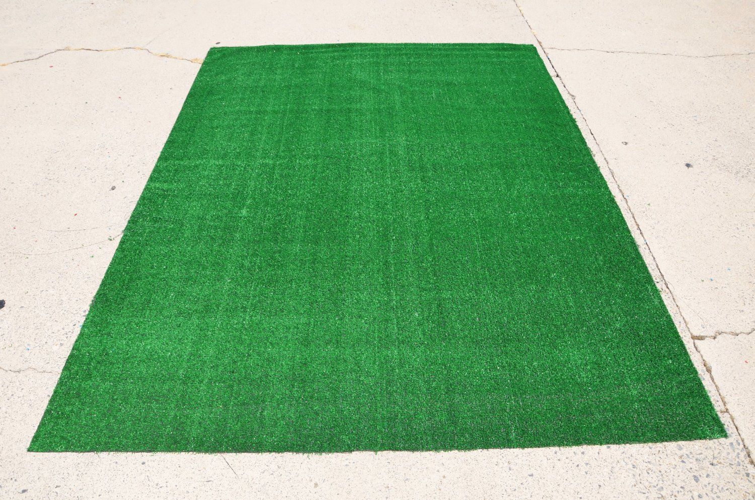 Use For Wall For Garden Of Eden Theme Indoor Outdoor Carpet