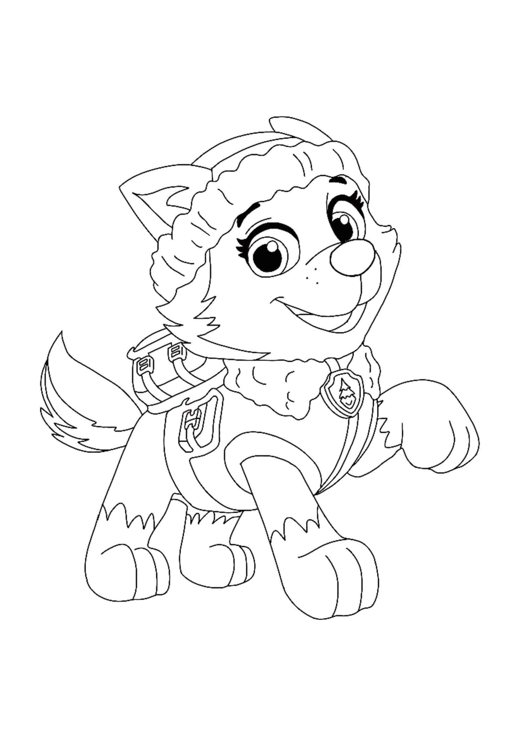 Paw Patrol Everest Coloring Sheet Paw Patrol Coloring Pages Paw Patrol Coloring Everest Paw Patrol