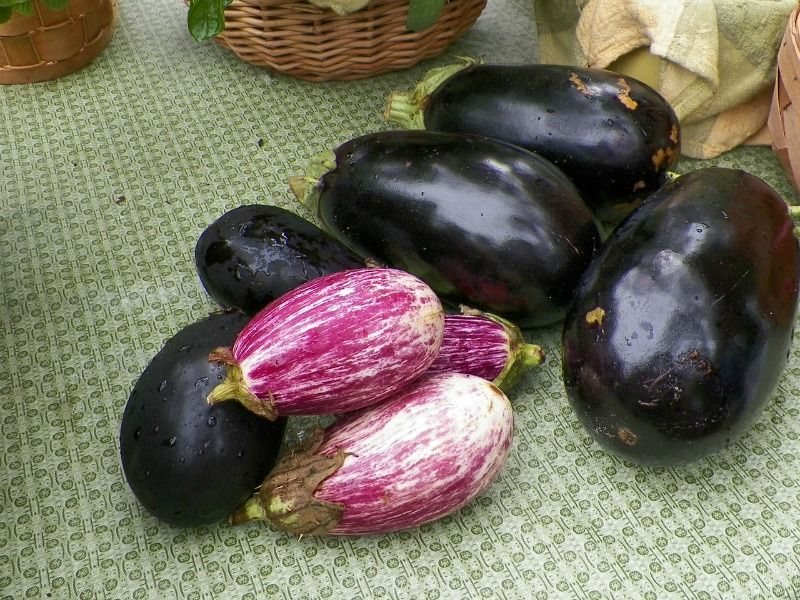 Easy Vegetables To Grow In Pots Great For Small Spaces 400 x 300