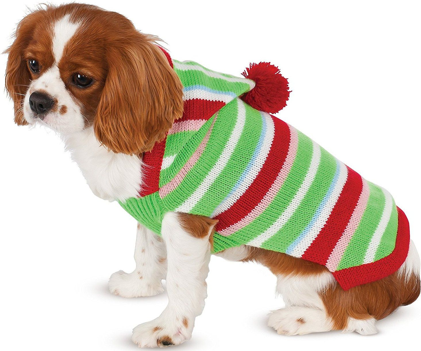 Include your pup in the festivities this holiday season with Rubieu0027s Costume Company Candy Striped Dog  sc 1 st  Pinterest & Include your pup in the festivities this holiday season with Rubieu0027s ...