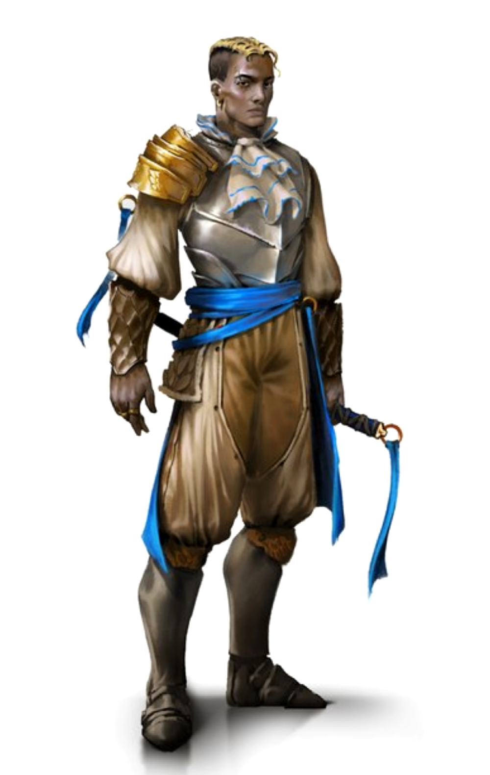 Male Human Noble Fighter Paladin Knight - Pathfinder PFRPG DND D&D 3.5 5E 5th ed d20 fantasy ...
