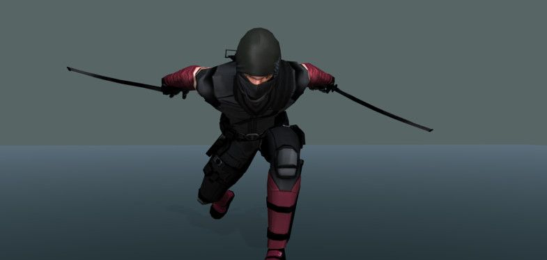24+ Ninja animation info