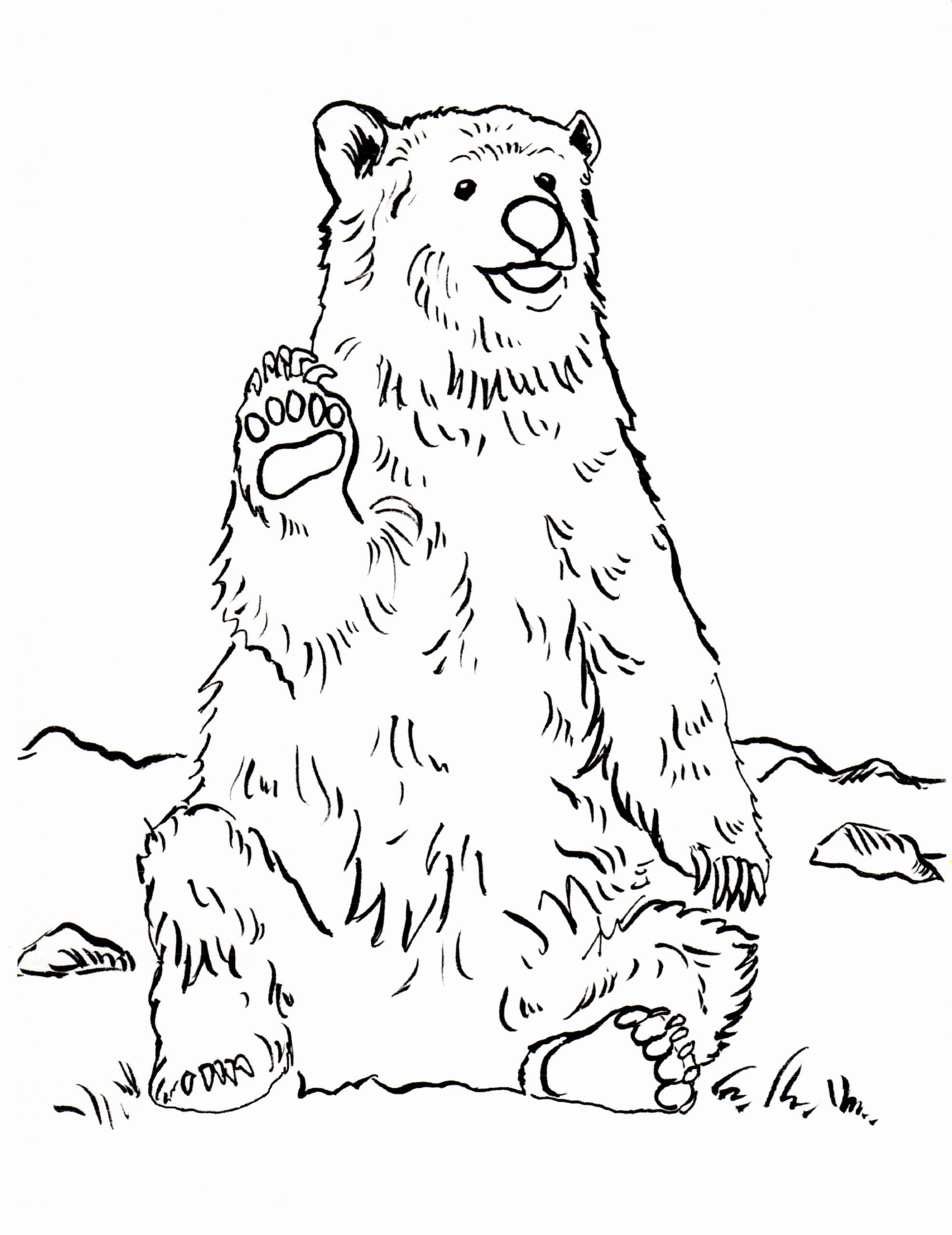 Pin On Best Activity Coloring Pages