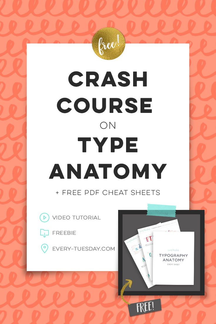 A Colorful Crash Course in Type Anatomy | Pinterest | Type anatomy ...