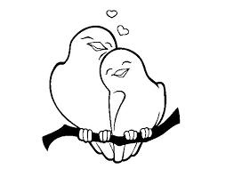 Resultado De Imagen Para Amor Dibujos Bird Drawings Colorful Art Art