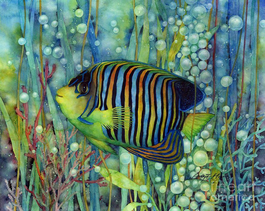 Royal Angelfish By Hailey E Herrera Watercolor Fish Art Artwork