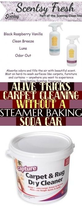 Alive Tricks Carpet Cleaning Without A Steamer Baking Soda Car Carpetcleaning Alive Tricks Teppichreini How To Clean Carpet Natural Carpet Cleaning Cleaning