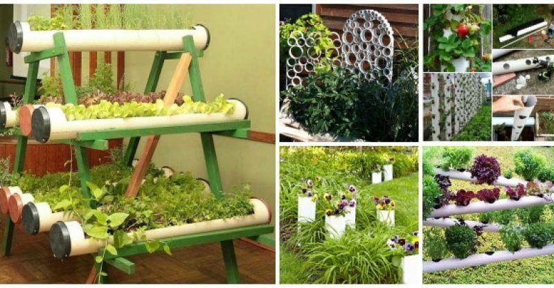 8 DIY PVC Gardening Ideas and Projects | Pinterest | Gardens, Garden ...