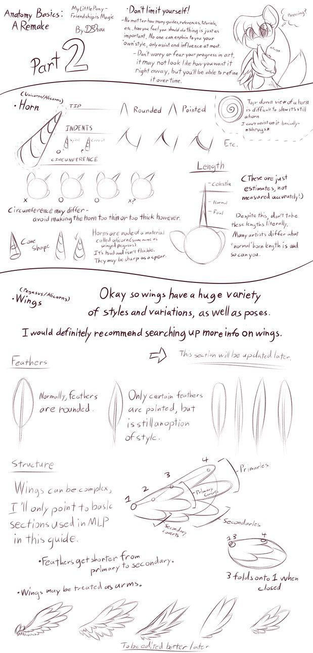 MLP - Basic Anatomy Guide 2 [Horn + Wing(Incomp)] by DShou   Pony ...