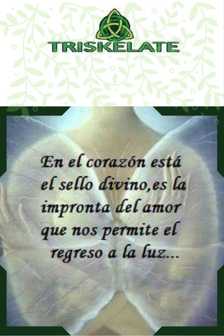 Corazon Luz Amor Frases Pinterest Spanish Quotes Reiki Y