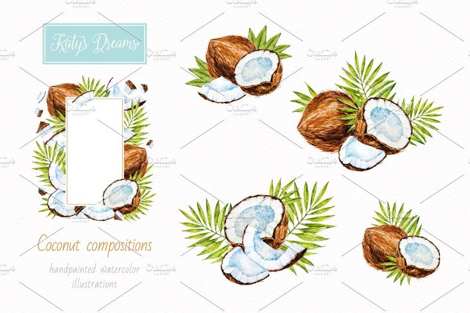 Coconut Watercolor Graphic Design Illustration Hand Painted