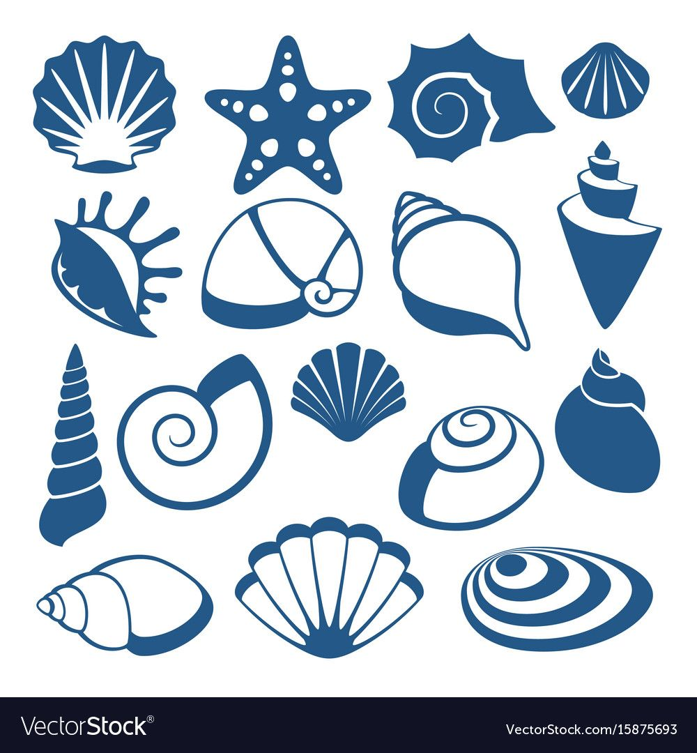 Sea shell silhouette icons Royalty Free Vector Image ,