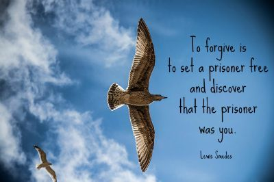 How to Forgive Yourself > To make peace with yourself and live a joyful life, you need to learn how to forgive yourself.  #forgiveness #freedom #joy
