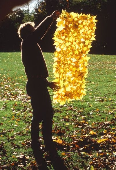 Andy Goldsworthy's art