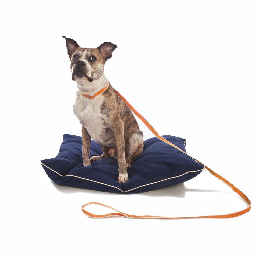 Stripe Hype Monogrammed Dog Leashes