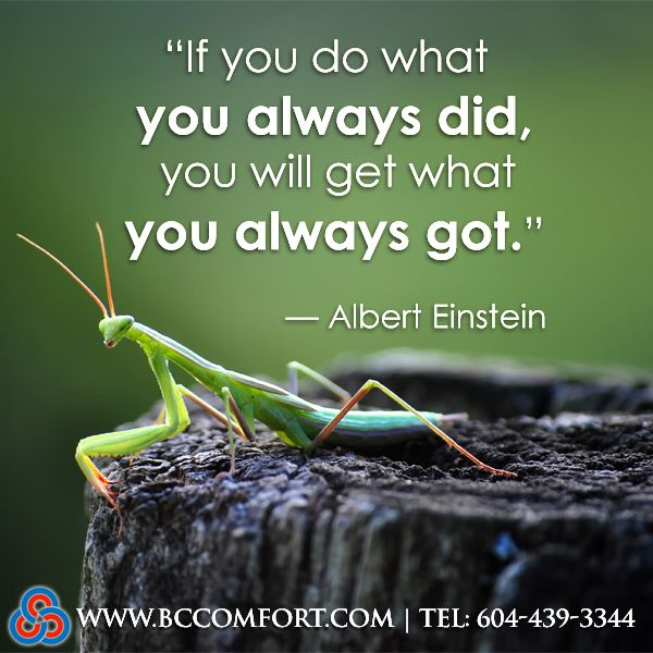 If You Do What You Always Did You Will Get What You Always Got
