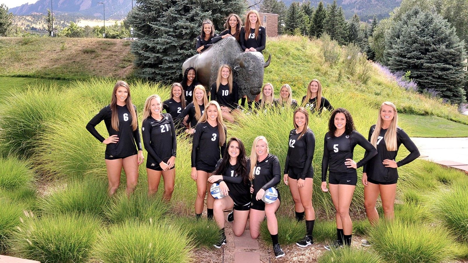 2016 Volleyball Roster Cubuffs Com University Of Colorado Buffaloes Volleyball News Volleyball Roster