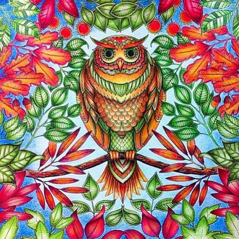 Jardim Secreto Inpiration Desenho Coruja Secretgarden Owl