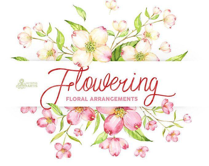 Blüte Aquarell Vereinbarungen Vorlagen Bilder Blumen Grün Rosa