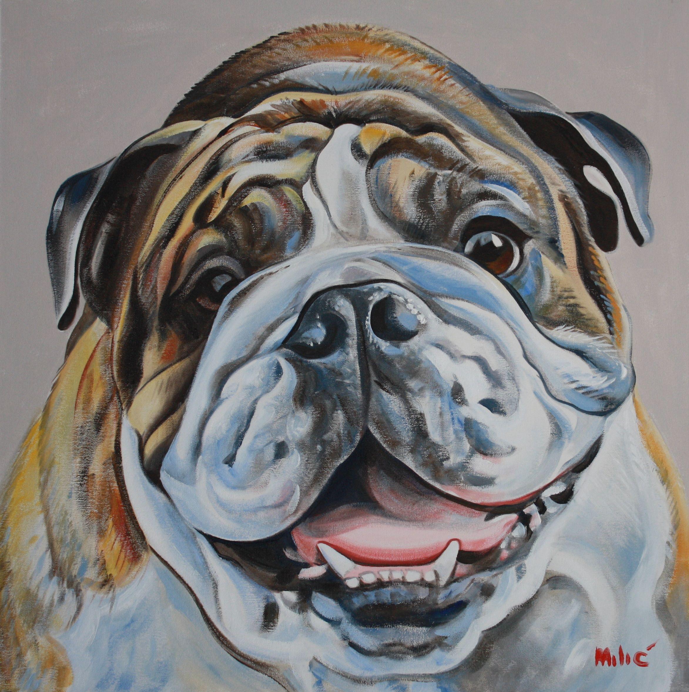 """alex's bulldog 24x24"""" oil on canvas by dragoslav drago"""