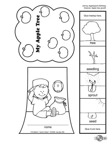 My Apple Tree, Lesson Plans - The Mailbox school Pinterest - preschool lesson plan